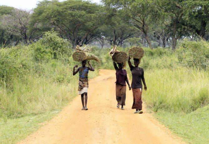 נשים מקומיות באוגנדה